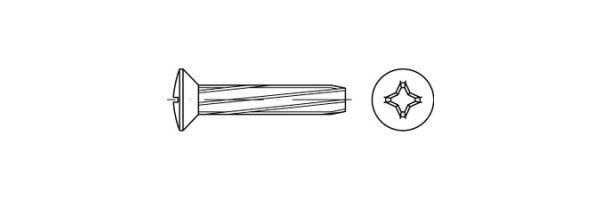 DIN 7516 Form E Linsensenkkopf